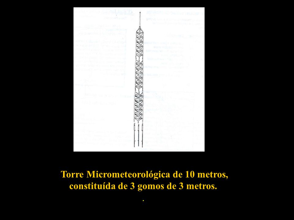 Torre Micrometeorológica de 10 metros, constituída de 3 gomos de 3 metros.