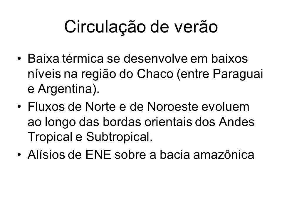 Circulação de verão Baixa térmica se desenvolve em baixos níveis na região do Chaco (entre Paraguai e Argentina).