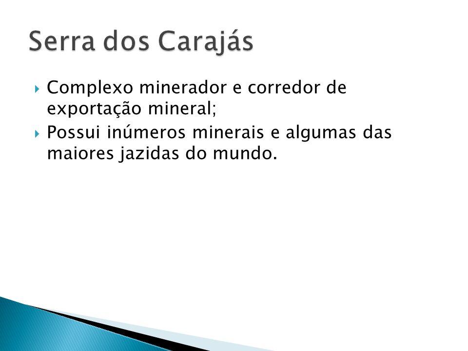 Serra dos Carajás Complexo minerador e corredor de exportação mineral;