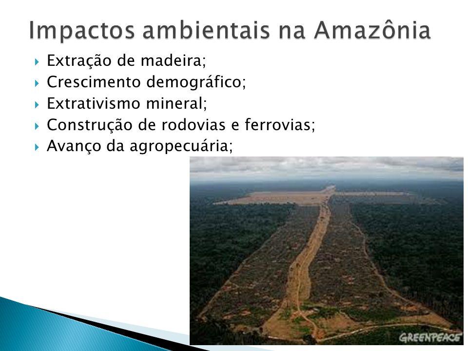 Impactos ambientais na Amazônia