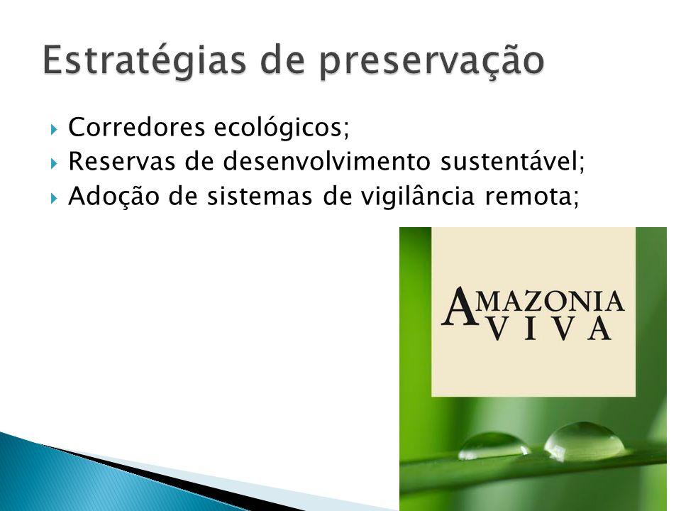 Estratégias de preservação