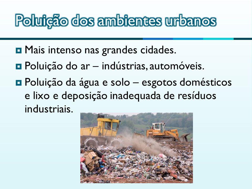 Poluição dos ambientes urbanos