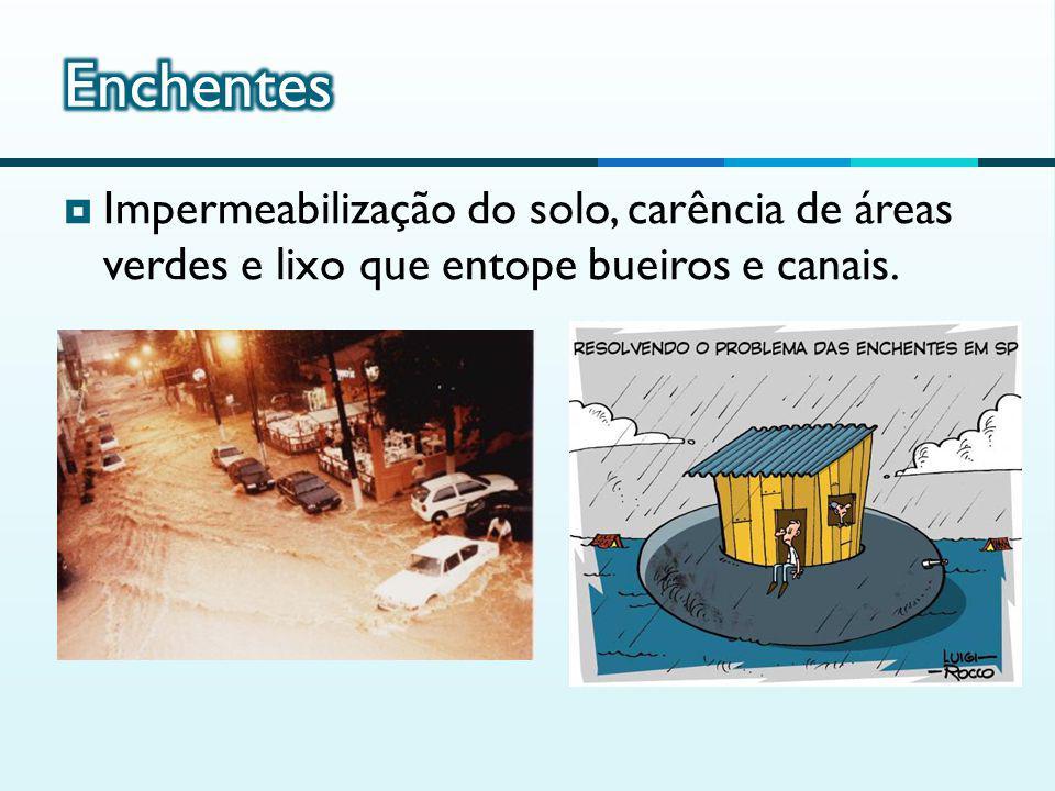 Enchentes Impermeabilização do solo, carência de áreas verdes e lixo que entope bueiros e canais.