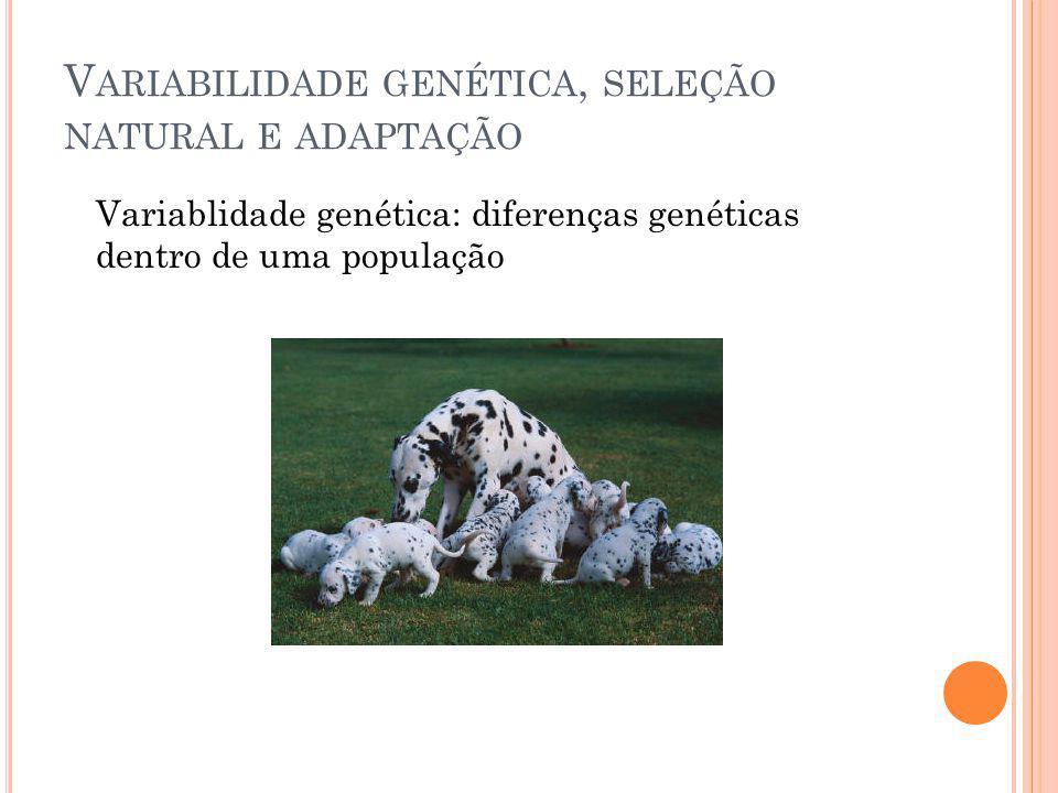Variabilidade genética, seleção natural e adaptação
