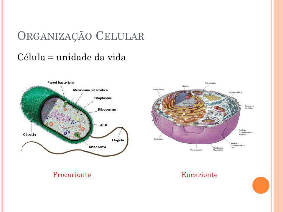 Organização Celular Célula = unidade da vida.