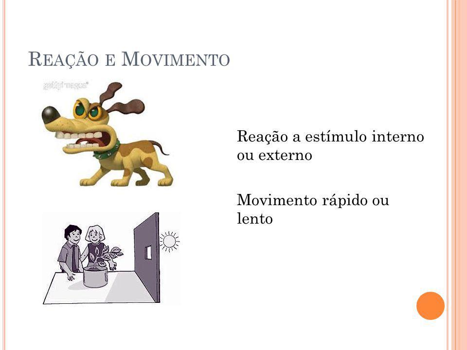 Reação e Movimento Reação a estímulo interno ou externo Movimento rápido ou lento