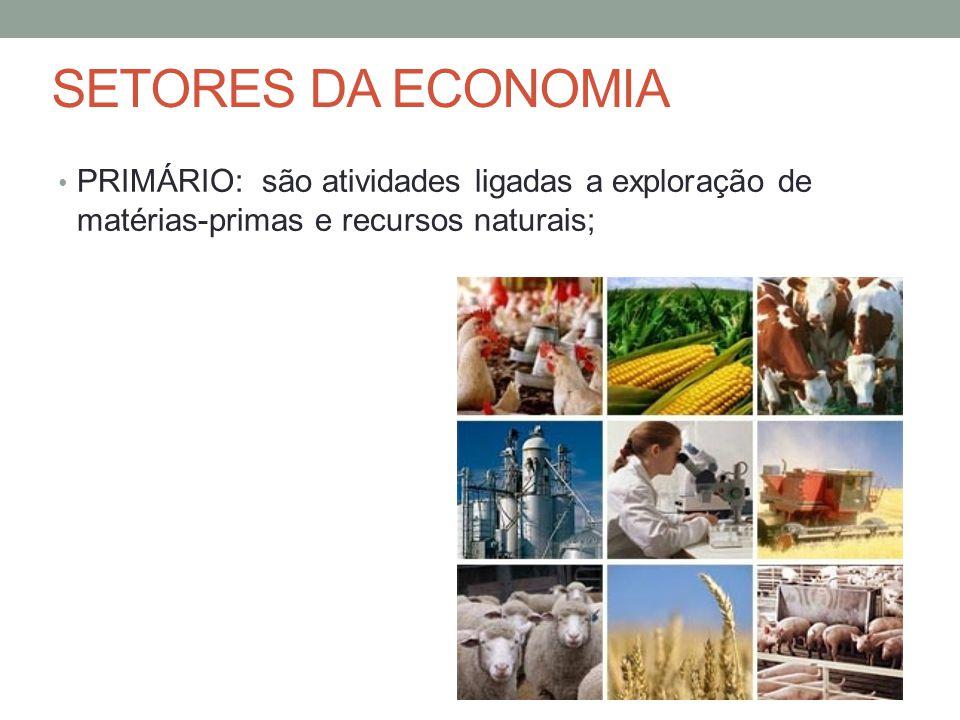 SETORES DA ECONOMIA PRIMÁRIO: são atividades ligadas a exploração de matérias-primas e recursos naturais;