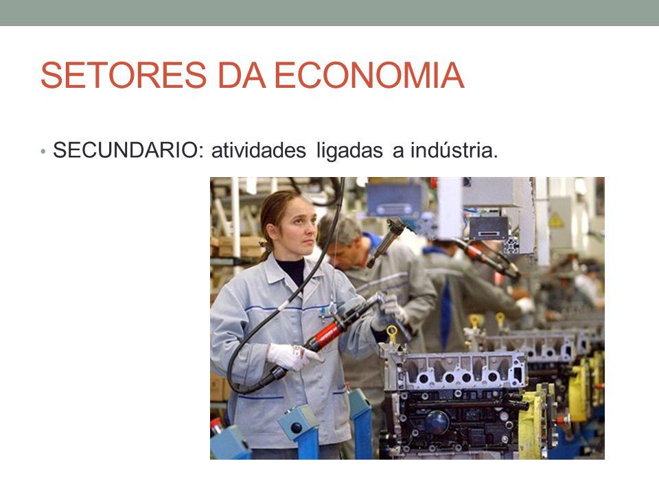 SETORES DA ECONOMIA SECUNDARIO: atividades ligadas a indústria.