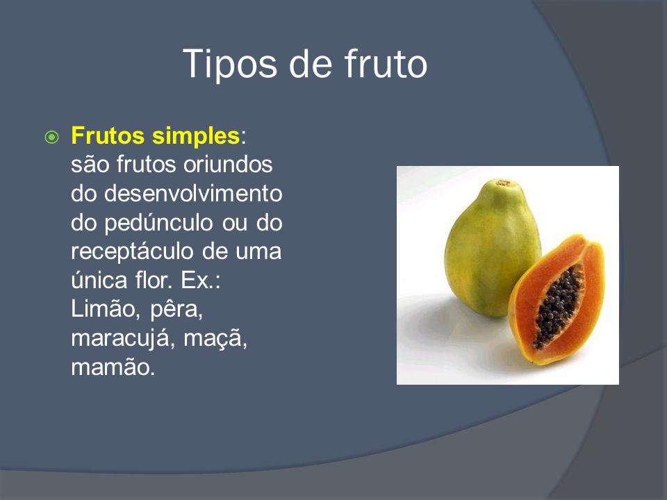 Tipos de fruto