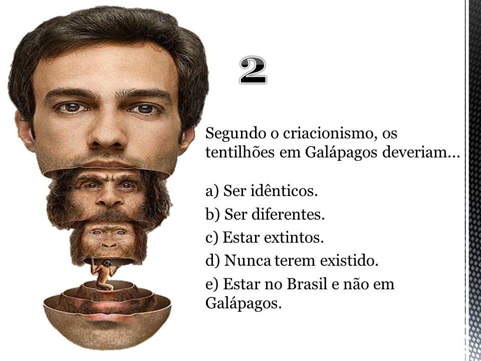 2 Segundo o criacionismo, os tentilhões em Galápagos deveriam...