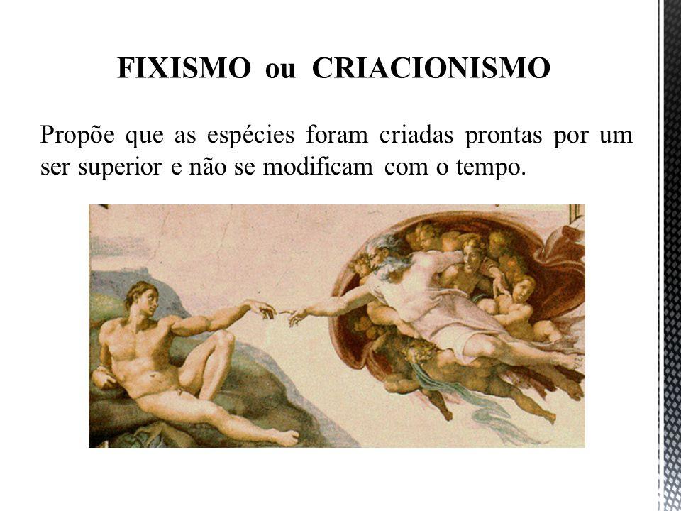 FIXISMO ou CRIACIONISMO