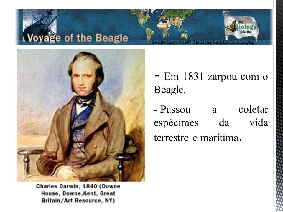 Em 1831 zarpou com o Beagle. Passou a coletar espécimes da vida terrestre e marítima.