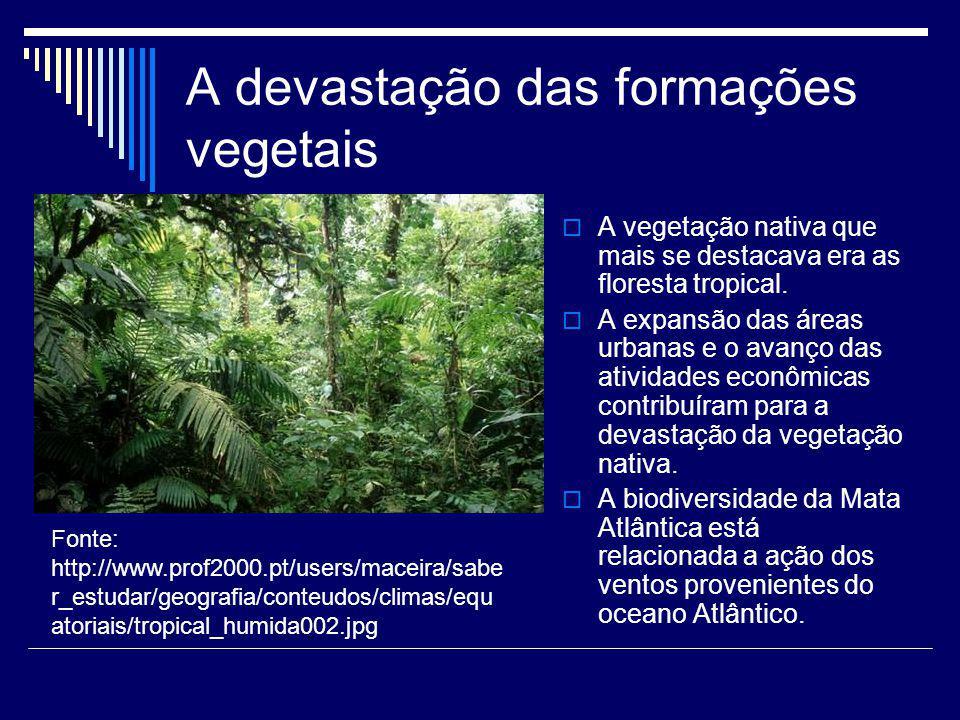 A devastação das formações vegetais
