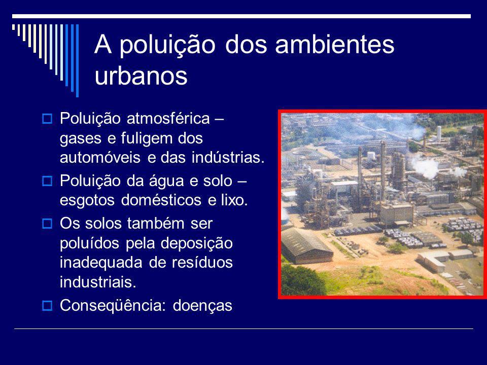 A poluição dos ambientes urbanos