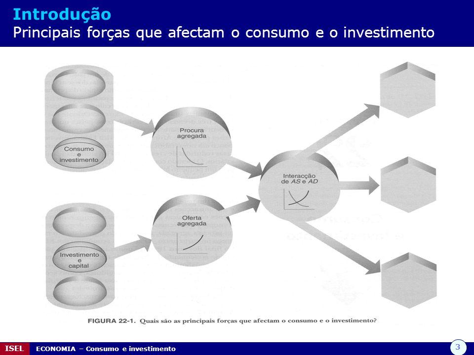 Introdução Principais forças que afectam o consumo e o investimento