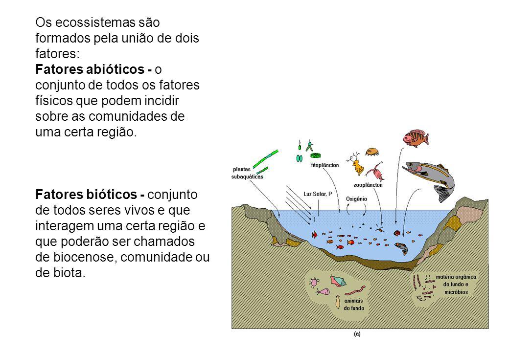 Os ecossistemas são formados pela união de dois fatores: Fatores abióticos - o conjunto de todos os fatores físicos que podem incidir sobre as comunidades de uma certa região.