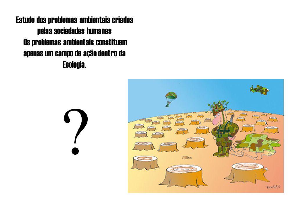 Estudo dos problemas ambientais criados pelas sociedades humanas