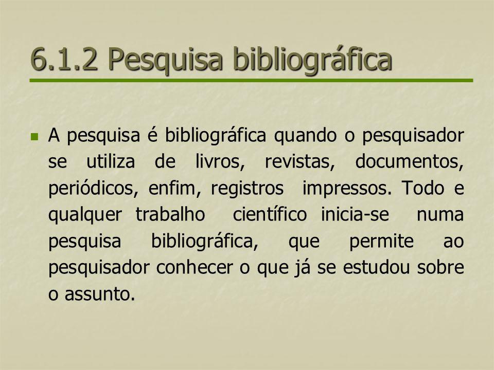 6.1.2 Pesquisa bibliográfica