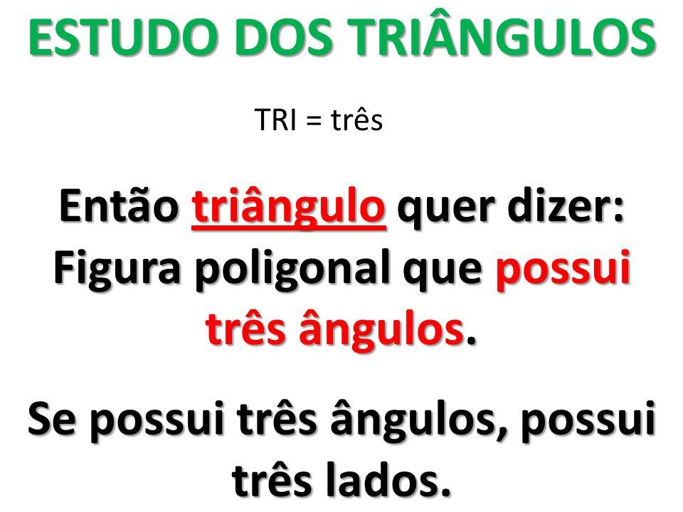 ESTUDO DOS TRIÂNGULOS Então triângulo quer dizer: