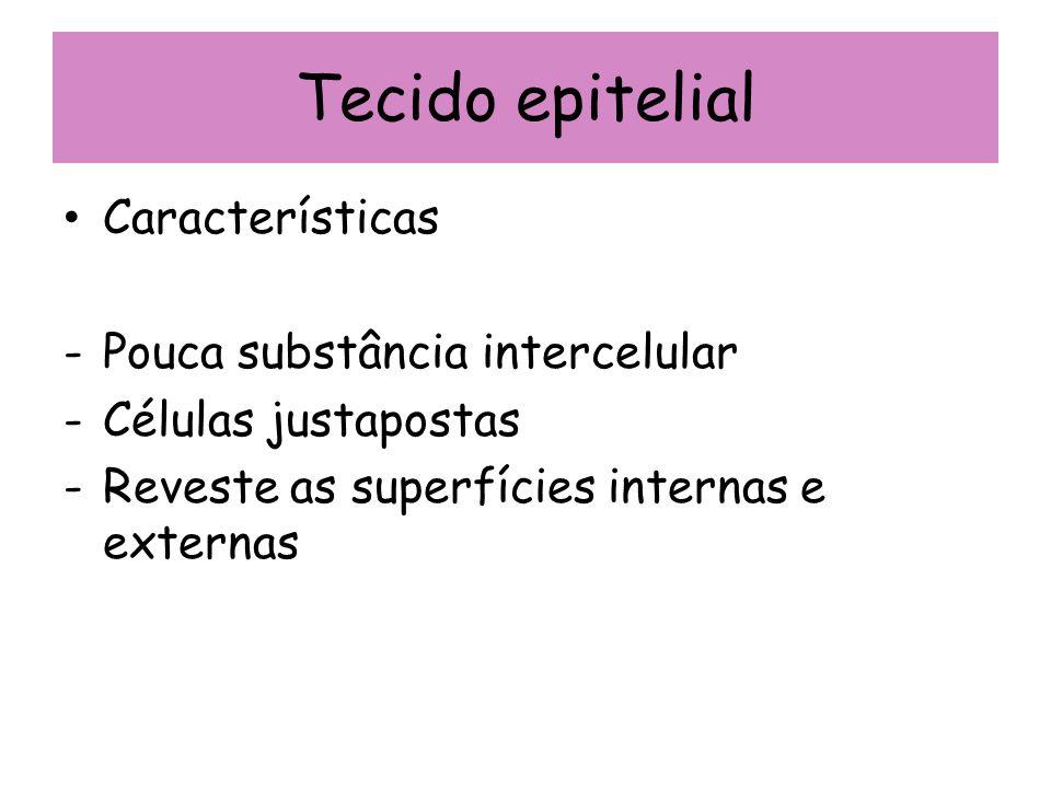 Tecido epitelial Características Pouca substância intercelular
