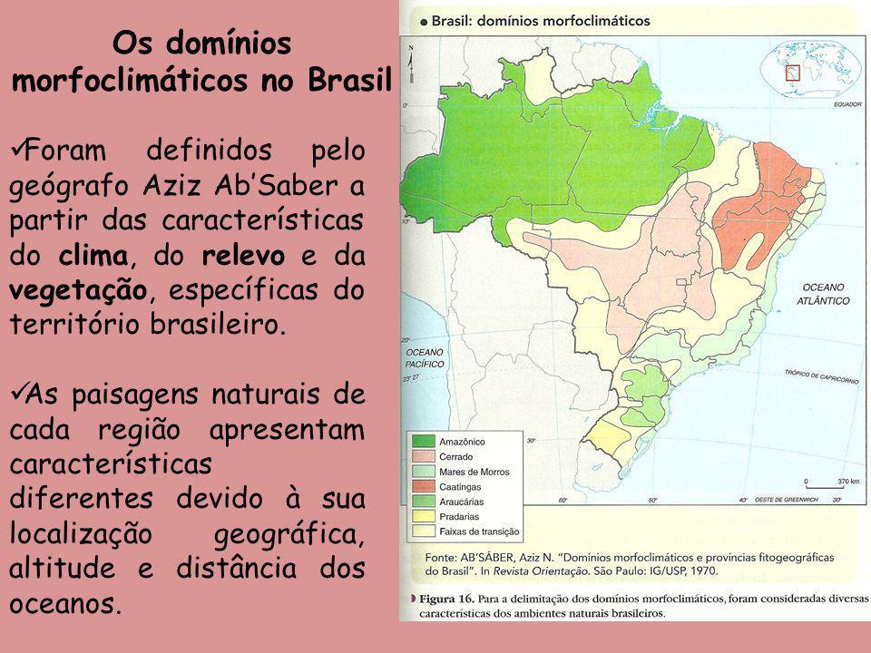 Os domínios morfoclimáticos no Brasil