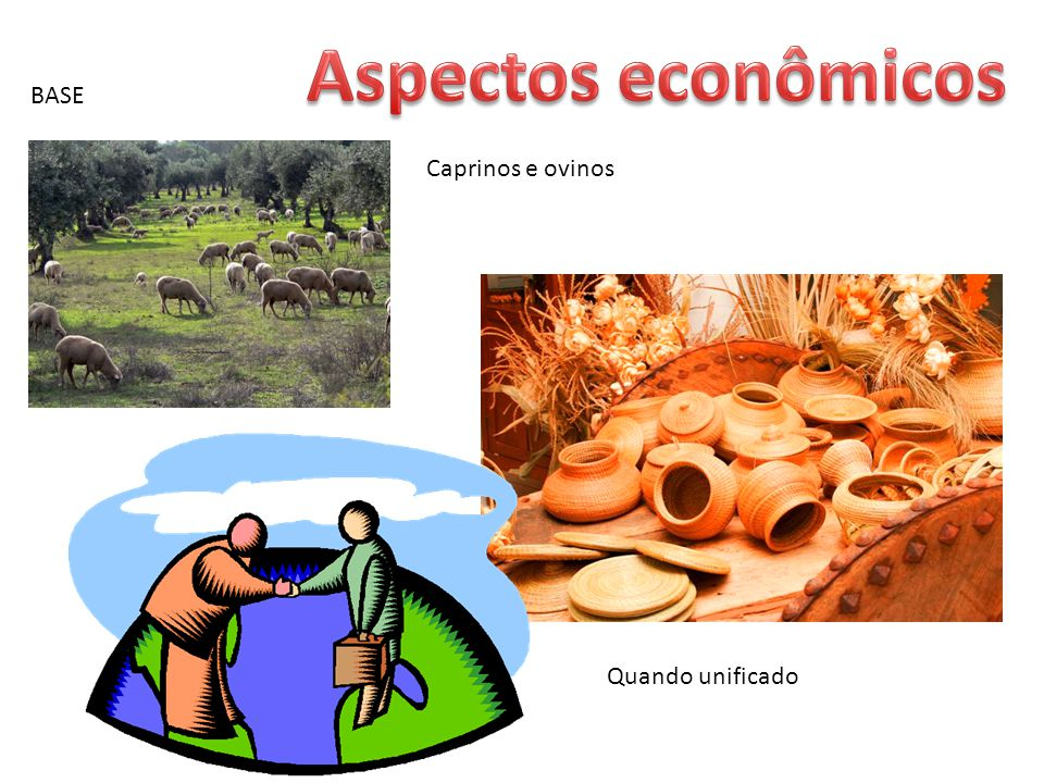 Aspectos econômicos BASE Caprinos e ovinos Quando unificado