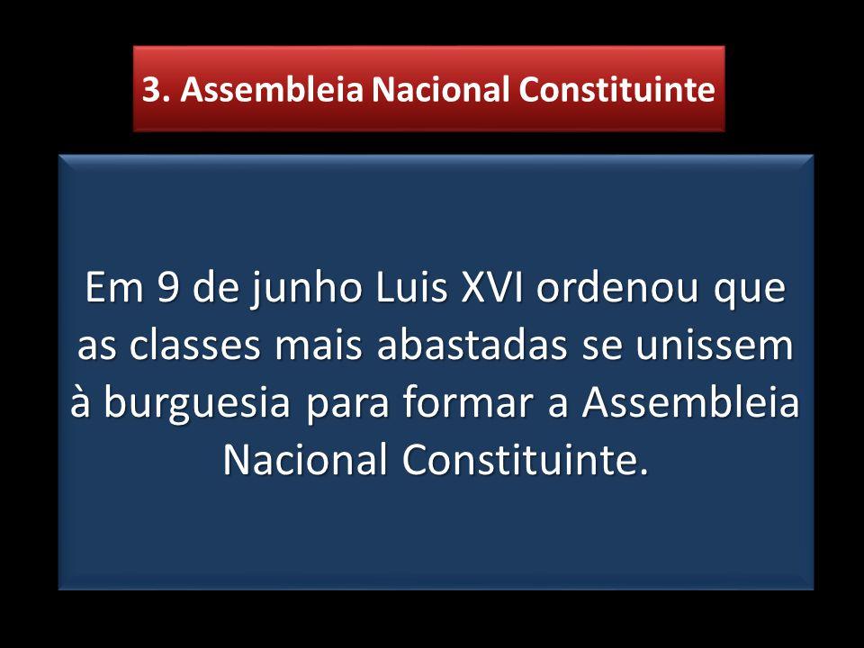 3. Assembleia Nacional Constituinte