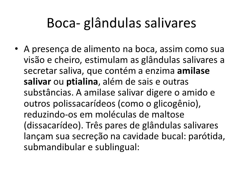 Boca- glândulas salivares