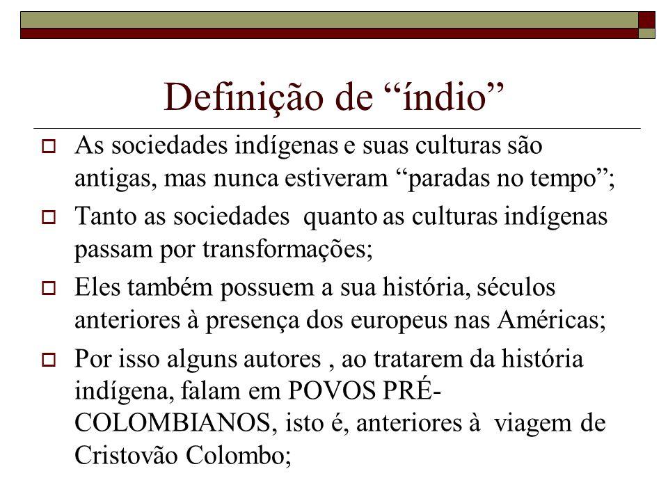 Definição de índio As sociedades indígenas e suas culturas são antigas, mas nunca estiveram paradas no tempo ;