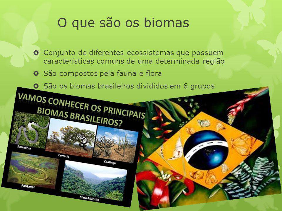 O que são os biomas Conjunto de diferentes ecossistemas que possuem características comuns de uma determinada região.