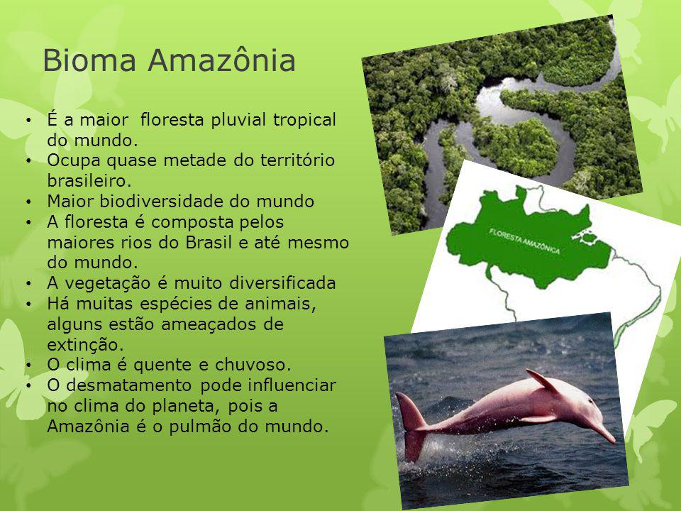 Bioma Amazônia É a maior floresta pluvial tropical do mundo.