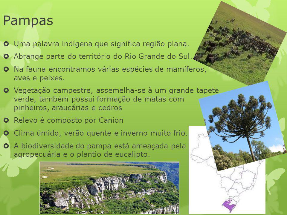 Pampas Uma palavra indígena que significa região plana.