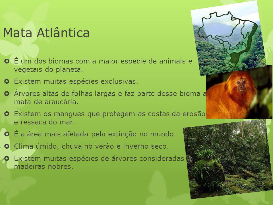 Mata Atlântica É um dos biomas com a maior espécie de animais e vegetais do planeta. Existem muitas espécies exclusivas.