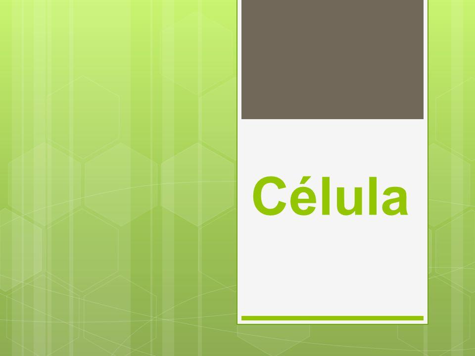 Célula