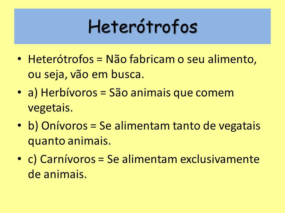 Heterótrofos Heterótrofos = Não fabricam o seu alimento, ou seja, vão em busca. a) Herbívoros = São animais que comem vegetais.
