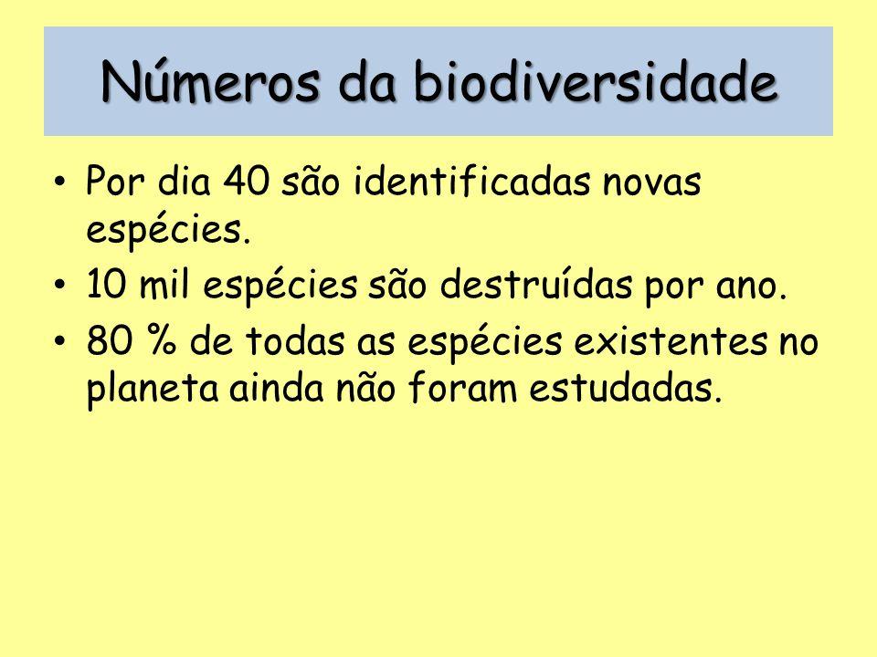 Números da biodiversidade