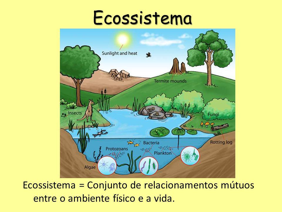 Ecossistema Ecossistema = Conjunto de relacionamentos mútuos entre o ambiente físico e a vida.