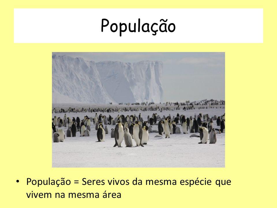 População População = Seres vivos da mesma espécie que vivem na mesma área