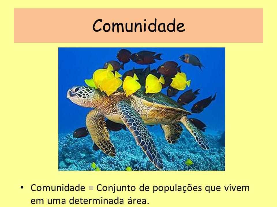 Comunidade Comunidade = Conjunto de populações que vivem em uma determinada área.