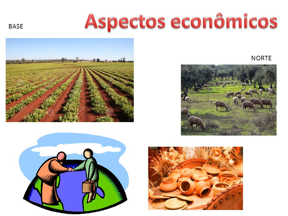 Aspectos econômicos BASE NORTE