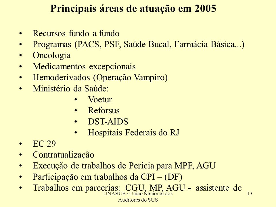 Principais áreas de atuação em 2005
