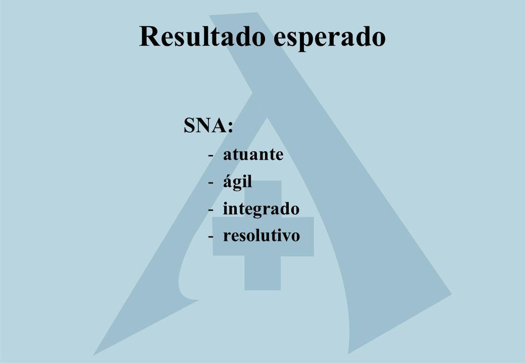 Resultado esperado SNA: atuante ágil integrado resolutivo