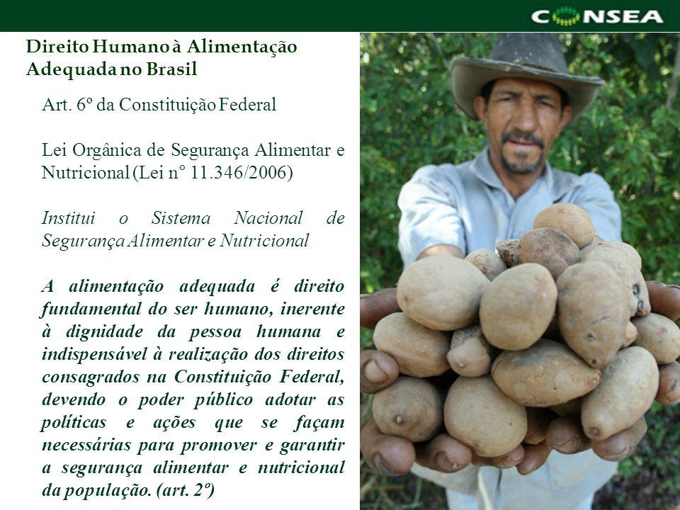 Direito Humano à Alimentação Adequada no Brasil