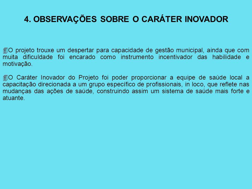 4. OBSERVAÇÕES SOBRE O CARÁTER INOVADOR