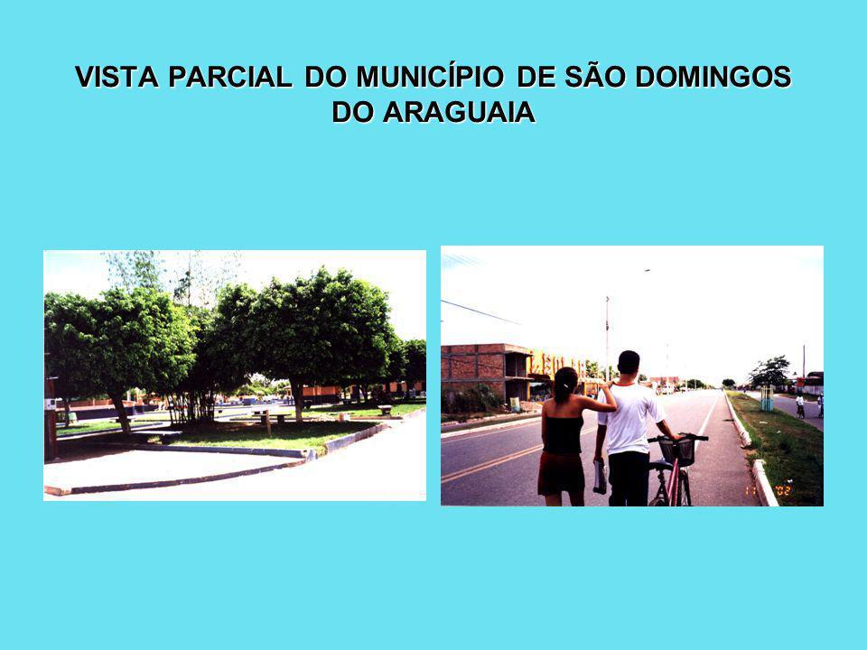 VISTA PARCIAL DO MUNICÍPIO DE SÃO DOMINGOS DO ARAGUAIA