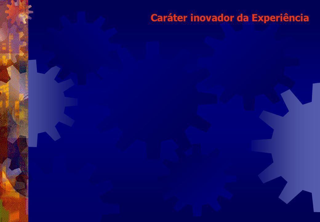 Caráter inovador da Experiência