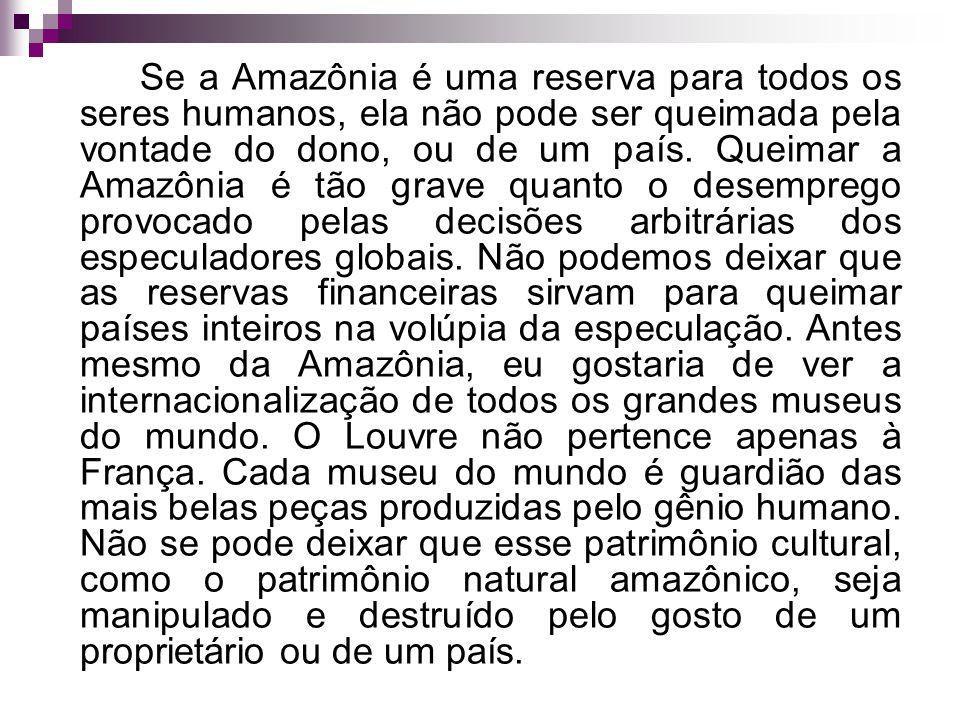 Se a Amazônia é uma reserva para todos os seres humanos, ela não pode ser queimada pela vontade do dono, ou de um país.