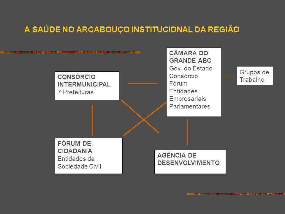 A SAÚDE NO ARCABOUÇO INSTITUCIONAL DA REGIÃO