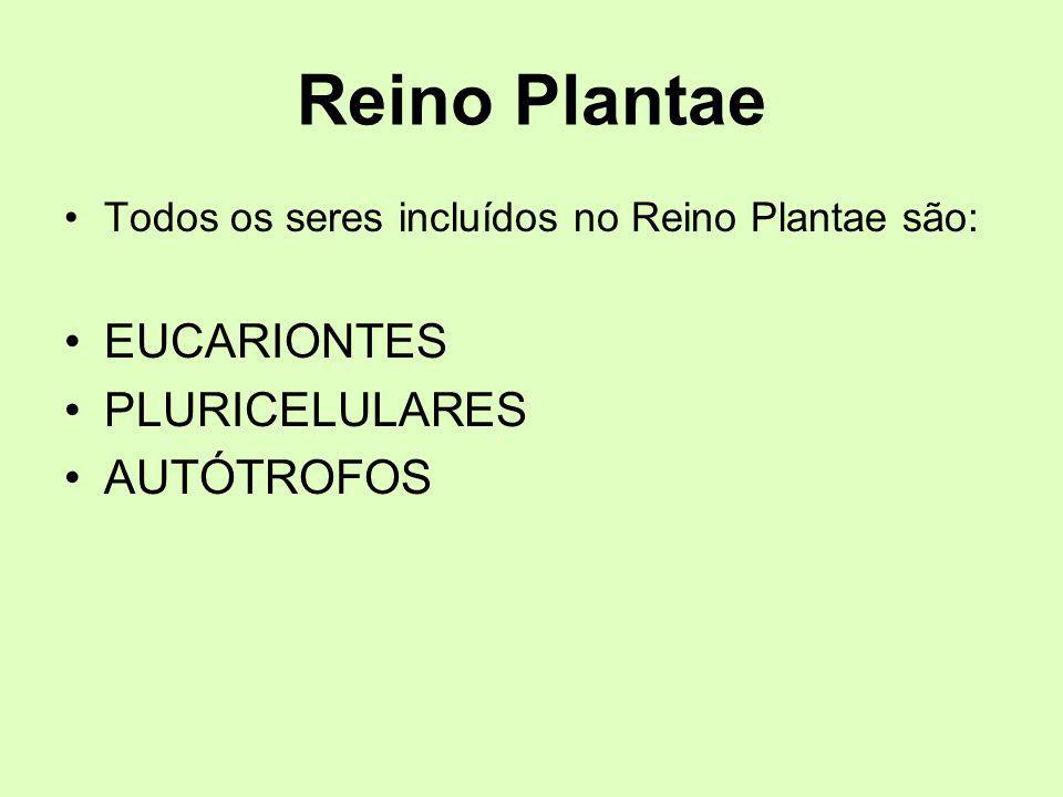 Reino Plantae EUCARIONTES PLURICELULARES AUTÓTROFOS