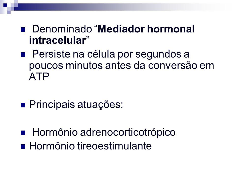 Denominado Mediador hormonal intracelular